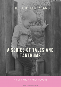 The Toddler Years - A Series Of Tales And Tantrums