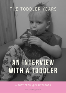 The Toddler Years - An Interview With A Toddler