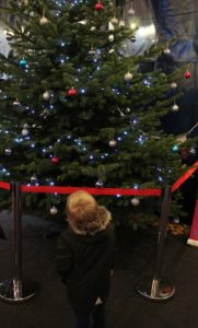 Cinderella at the Mercury Theatre - Little Man looking up at a Christmas tree with his back to the camera