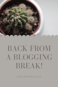 Back from a blogging break - where I've been and why